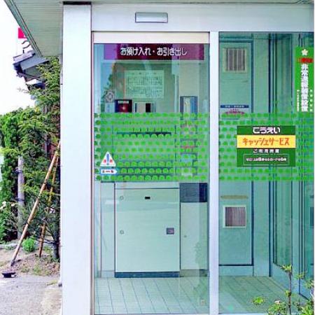 Pintu Otomatis DSN-60